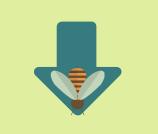 flecha con abeja