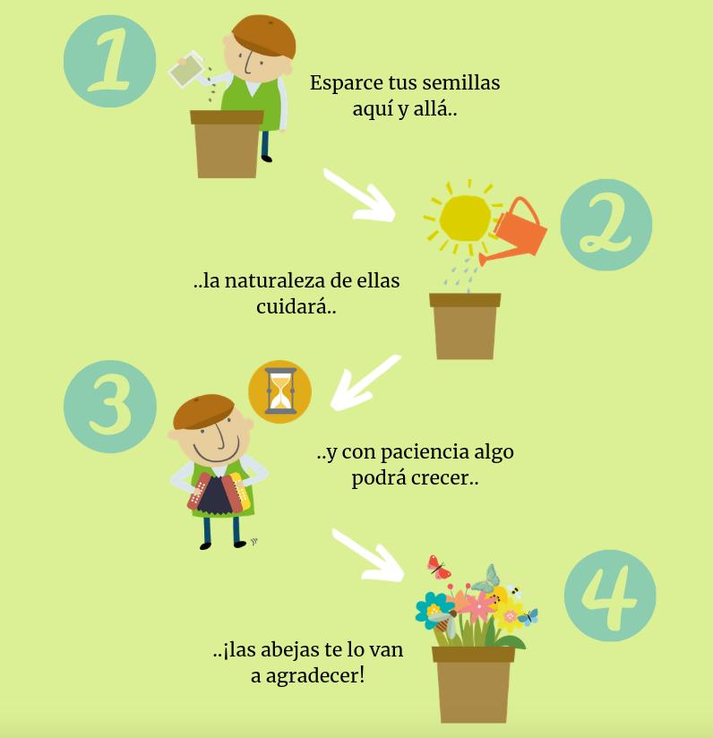 instrucciones plantar semillas